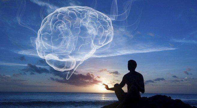 Meditation-the-Brain