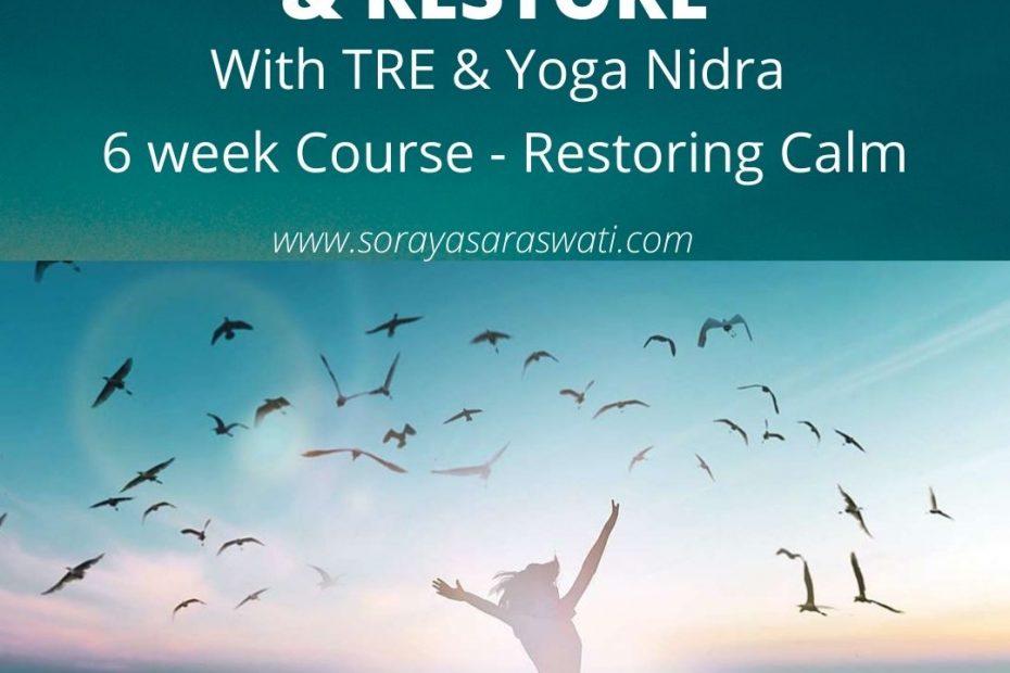 TRE & Yoga Nidra Sunshine Coast