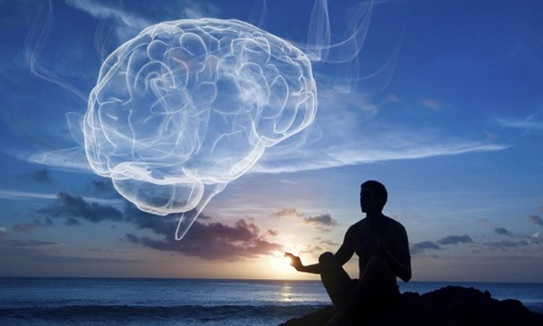 Meditation & the Brain